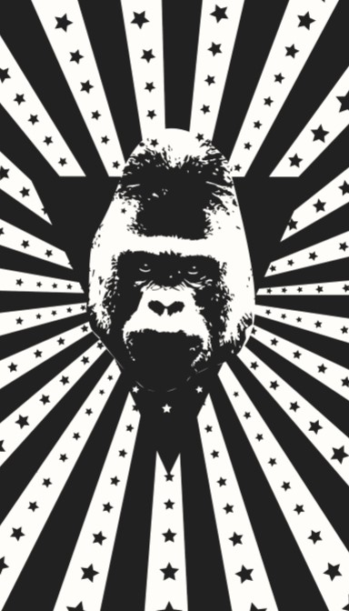 The back of Clay's business card - a black and white headshot of Harambe on a stars-and-stripes background.